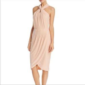 NWOT Cupcakes and Cashmere Blush Velvet Midi Dress